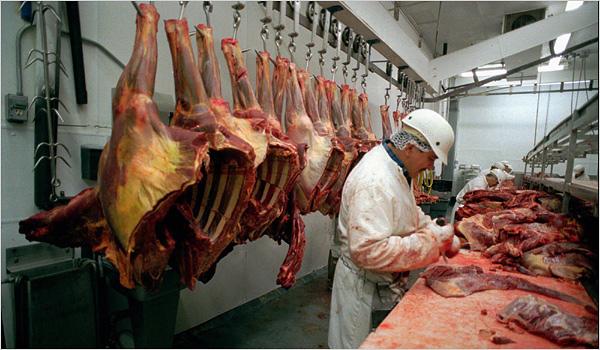 slaughterhouse_span