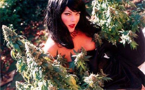 cutegothgirlwithpotsofmarijuanaplants
