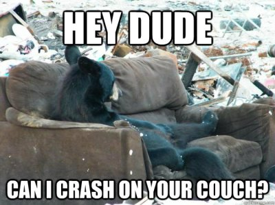 crash-on-the-couch